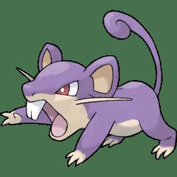 Pokémon, joey's rattata