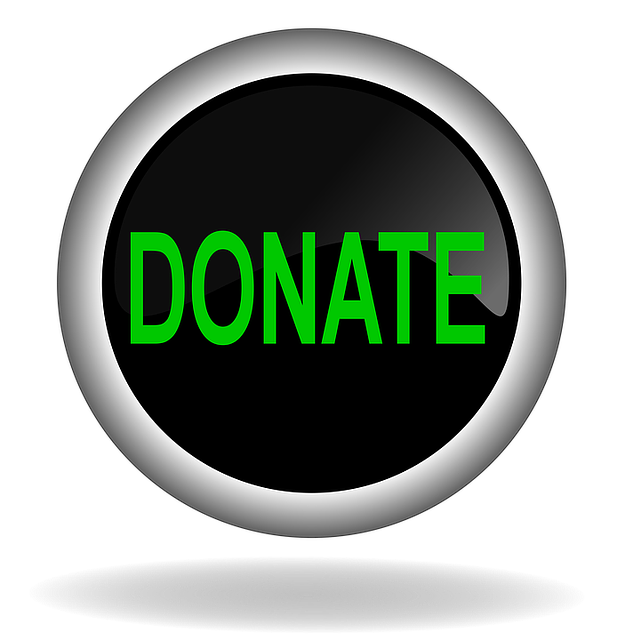 Geek insider virtual con donate button