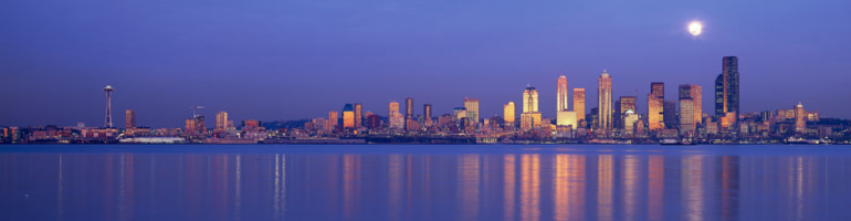 cropped-seattle-skyline-reflector-2